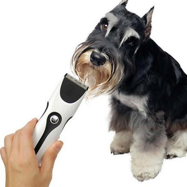 Как подстричь собаку  машинкой ножницами если она кусается
